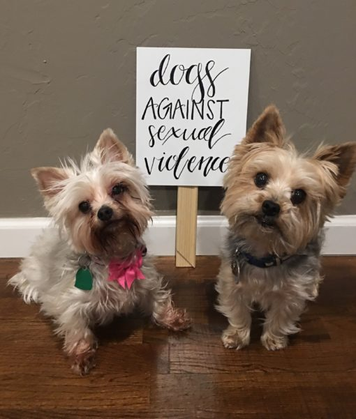 dogs against sexual violence