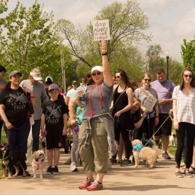 dog walk group